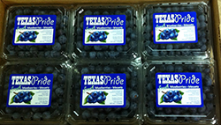 Texas Pride Blueberries Pints
